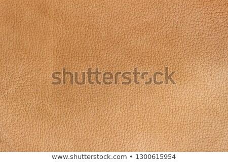 оранжевый · кожа · текстуры · аннотация · корова - Сток-фото © homydesign
