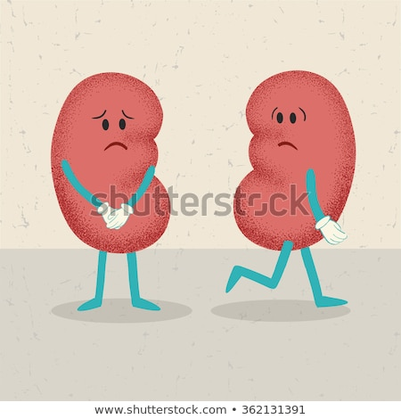 Losing Kidney Health Stock photo © Lightsource