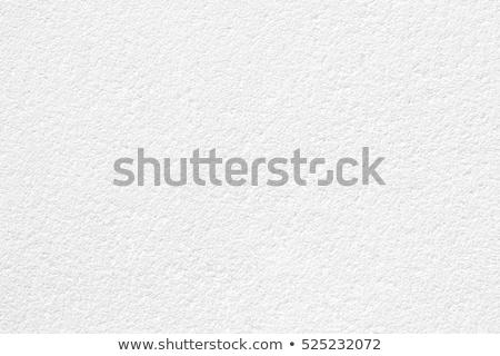 Seamless Texture of Stucco Wall. Stock photo © tashatuvango