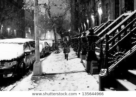 snow in harlem manhattan new york black white stock photo © eldadcarin
