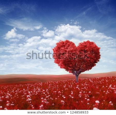 バレンタイン · フローラル · 緑 · 中心 · 手 · 図面 - ストックフォト © elmiko