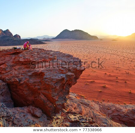 Jordanië panorama verbazingwekkend woestijn Stockfoto © macsim