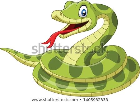 смешные · змеи · Cartoon · счастливым · весело · рот - Сток-фото © kariiika