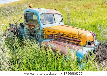 old truck out in the meadow stock photo © vwalakte