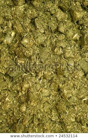 száraz · lucerna · lovak · étel · csőr · természet - stock fotó © lunamarina