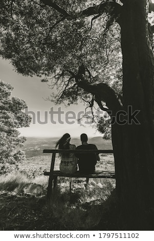 bench under a tree stock photo © zzve