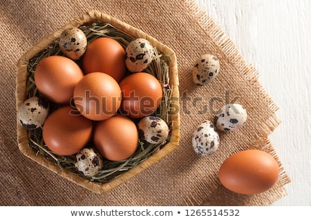 some chicken eggs and one quail egg stock photo © digitalr