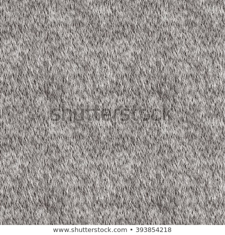 seamless fur texture pattern stock photo © leonardi