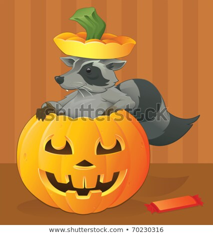 halloween · guaxinim · ocultação · doce · sorrir - foto stock © rpcreative