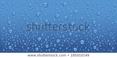 Stock fotó: Csepp · szürke · panoráma · cseppek · víz · kilátás