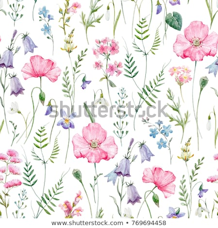 background for invitation with violet floral pattern stock photo © heliburcka