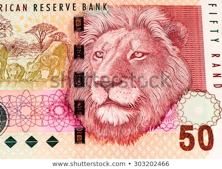 South African bank notes Stock photo © Vividrange
