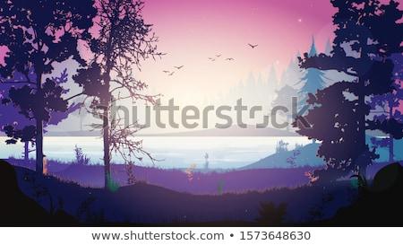 maan · volle · maan · mist · silhouet - stockfoto © kimmit