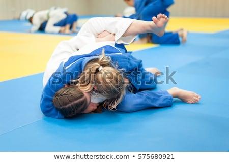 Judo mantener abajo paisaje deportes arte Foto stock © photography33