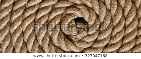 texture of the old rope stock photo © valeriy