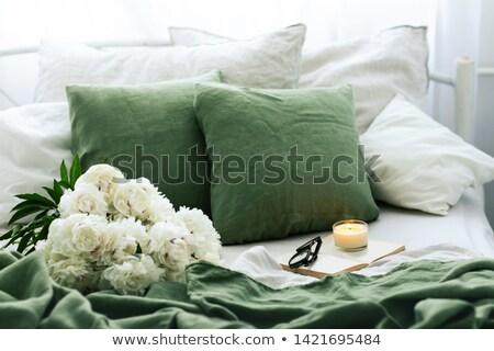 jasne · poduszki · odizolowany · biały · różowy · zielone - zdjęcia stock © scenery1