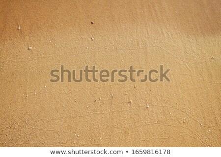 Tengerpart nedves homok barna textúra mediterrán Stock fotó © lunamarina