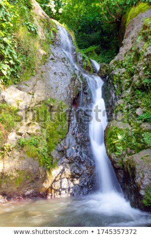 Waterfall in the Caucasus Mountains, Georgia Stock photo © Kotenko