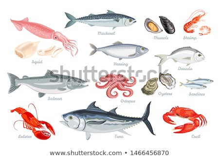 salmon and shrimps at a market stock photo © elxeneize