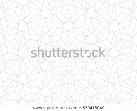 вектора · бесшовный · черно · белые · куб · линия · сетке - Сток-фото © timurock