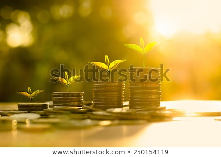 Business Wealth Concept Stock photo © Lightsource