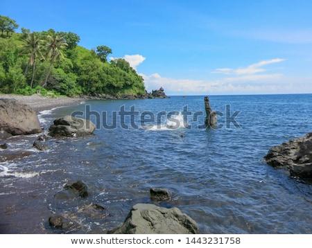 Crystal clear sea water at tropical beach Stock photo © Kzenon