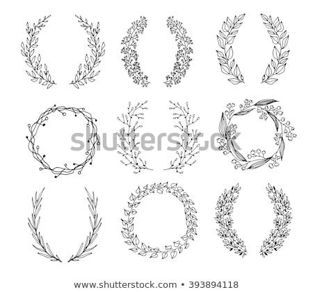 vektor · nyár · koszorú · kártya · virágok · levelek - stock fotó © mcherevan