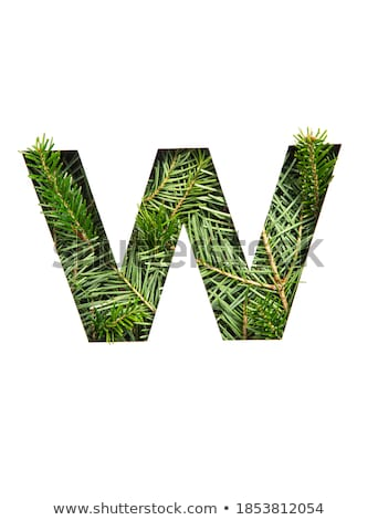 Stock photo: Letter W