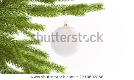 silver snow globe with white christmas trees stock photo © stephaniefrey