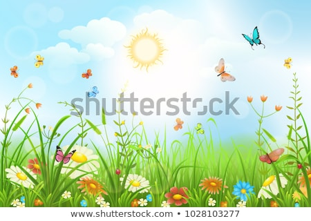 A flower garden with a butterfly and a ladybug Stock photo © bluering