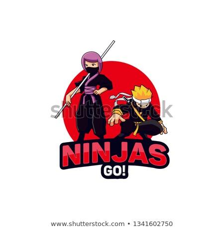 ninja · vetor · gráfico · arte · projeto - foto stock © vector1st