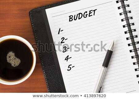 Budget List Concept Stock photo © ivelin