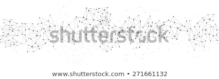Global network polygonal background. Vector Stock photo © -Baks-