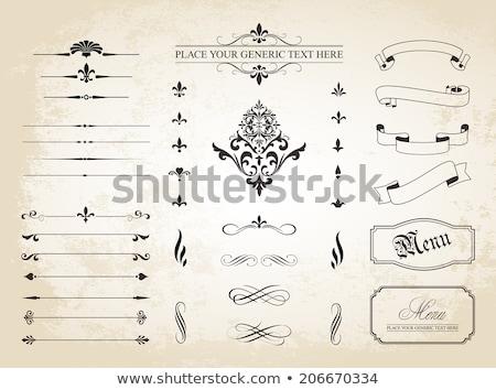 dekoratif · sayfa · toplama · vektör - stok fotoğraf © blue-pen