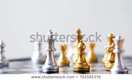 Close up of white chess pieces with blurred chess background stock photo © ankarb