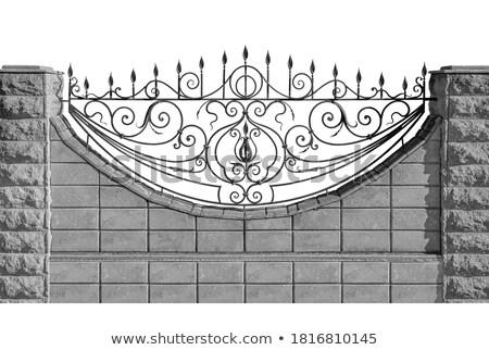 Textura antigo metálico portão metal Belgrado Foto stock © simply