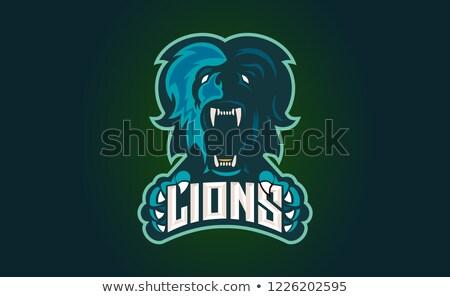 erős · oroszlán · embléma · súlyzó · logo · tornaterem - stock fotó © popaukropa