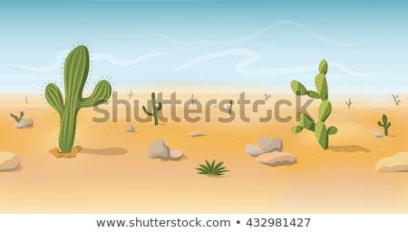 Vector cartoon style background with hot desert  Stock photo © curiosity
