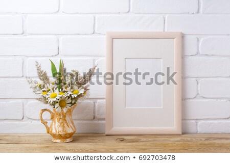 Moldura de madeira camomila grama dourado branco Foto stock © TasiPas