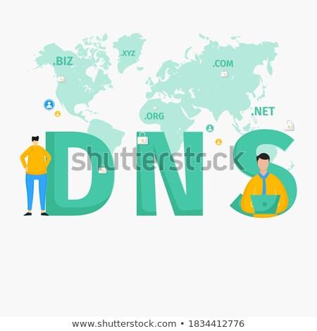 DNS Concept. Poster in Flat Design.  Stock photo © tashatuvango