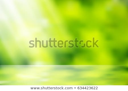 Light Green Background Vector. Bokeh Background With Vintage Filter. Stock photo © pikepicture
