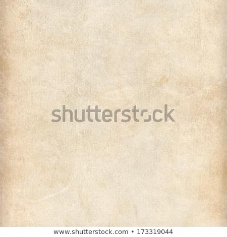 Boş dikkat kitap sayfa yırtılmış kenar Stok fotoğraf © pakete