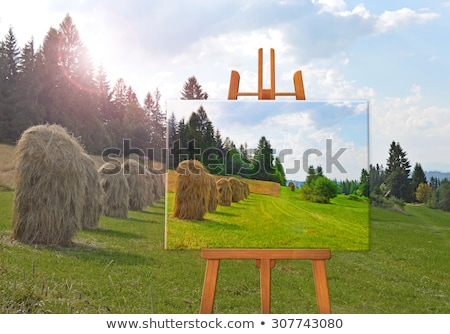Easel in a field Stock photo © IS2