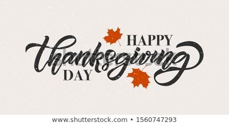 dankzegging · dag · wenskaart · partij · natuur · ontwerp - stockfoto © orensila