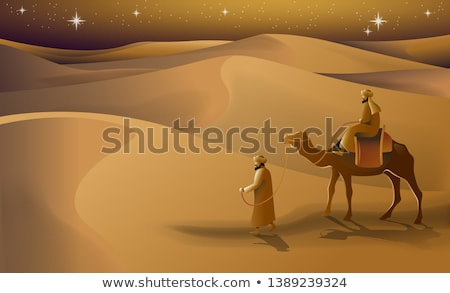 camels walking in the desert at night stock photo © bluering