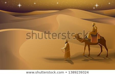 Deve yürüyüş çöl gece örnek gökyüzü Stok fotoğraf © bluering