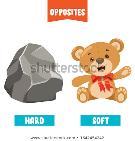 Opposite words for soft and hard Stock photo © bluering