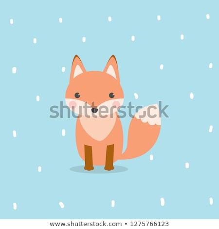 Vos portret grafische dier ingesteld gezicht Stockfoto © FoxysGraphic