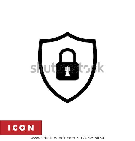 Sicher sicher Vektor Symbol Design Farbe Stock foto © rizwanali3d