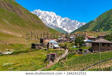 Vista alpino pueblo Georgia verano montana Foto stock © Kotenko